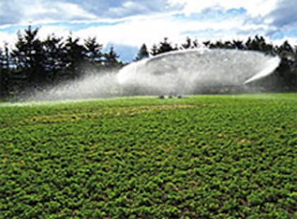 Effluent irrigators